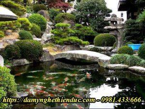 hồ-cá-koi-đẹp-min-300x225 Trang chủ